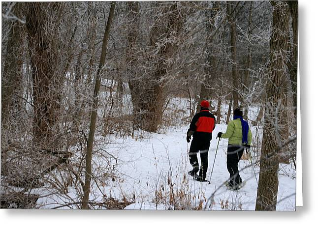 Snowshoeing In The Park Greeting Card by Kay Novy