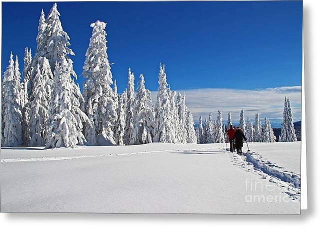 Snowshoers Under Bluebird Sky Greeting Card by Donald Sewell