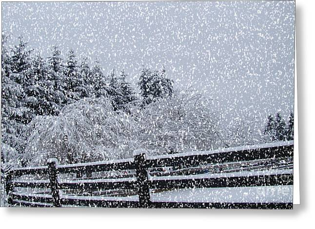 Snowstorm Coming Greeting Card by Beverly Guilliams