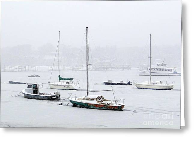 Snowstorm On Harbor Greeting Card by Ed Weidman