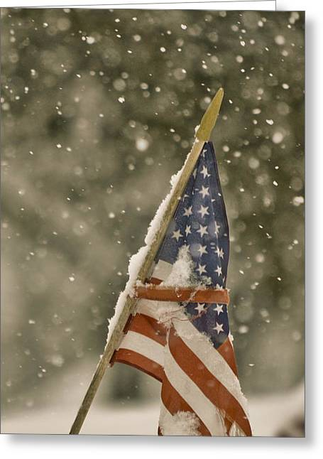 Snowy American Greeting Card by Trish Tritz