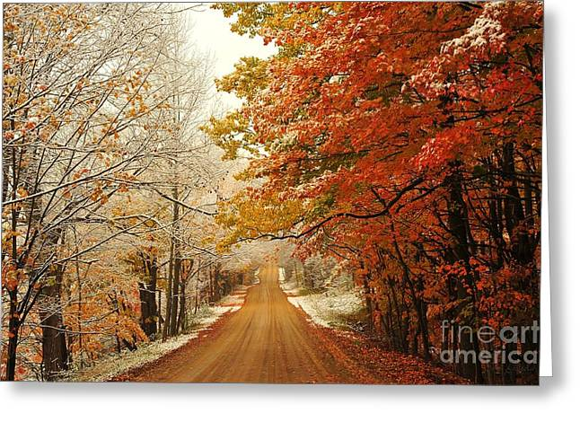 Snowy Autumn Road Greeting Card