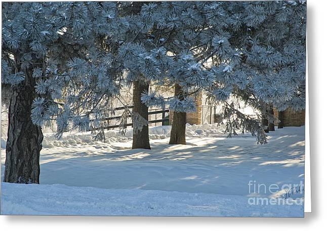 Snowy Blue Pines Greeting Card by Jessie Parker