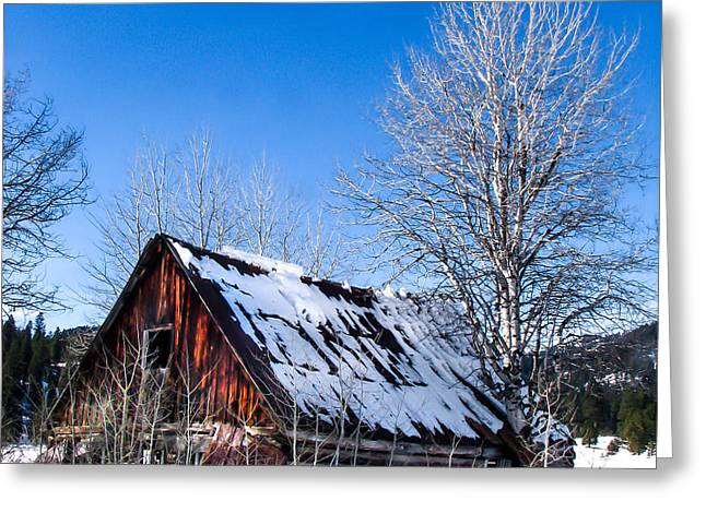 Snowy Cabin Greeting Card by Robert Bales