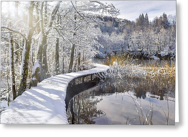 Snowy Catwalk Over The Pond Greeting Card