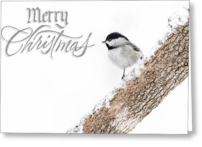 Snowy Chickadee Christmas Card Greeting Card