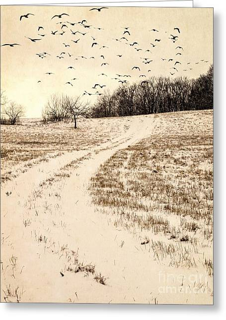 Snowy Country Road Greeting Card by Edward Fielding