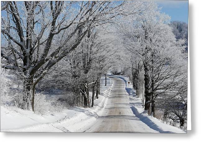 Snowy Country Road Greeting Card by Elizabeth Holland