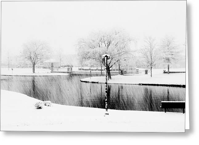 Snowy Day On Man Made Pond Greeting Card