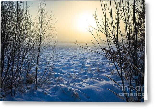 Snowy Dream Greeting Card