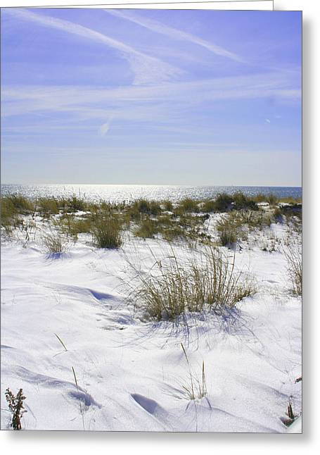 Snowy Dunes Greeting Card by Karen Silvestri