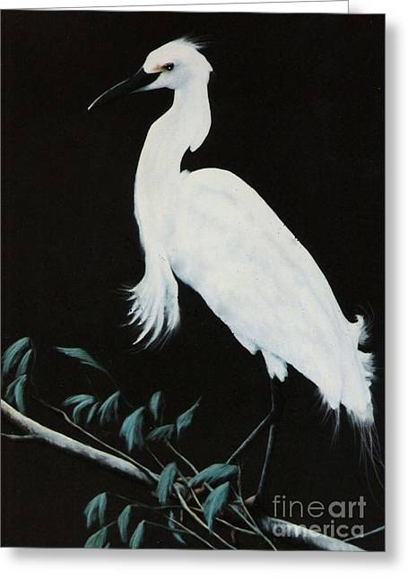 Greeting Card featuring the painting Snowy Egret by DiDi Higginbotham