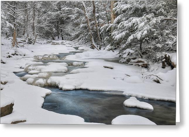 Snowy Falls Trail Greeting Card by Lori Deiter