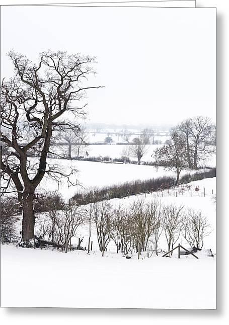 Snowy Fields Greeting Card