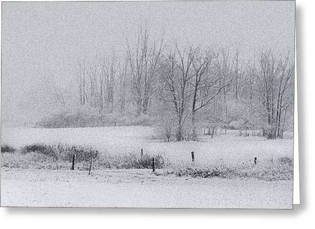 Snowy Fields Greeting Card by Michele Steffey