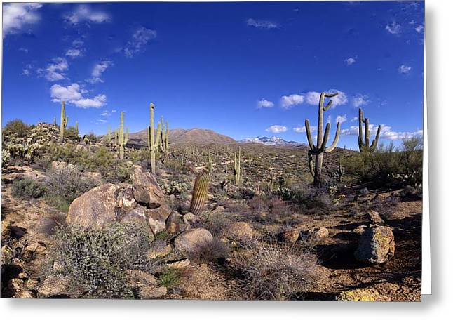 Snowy Four Peaks Panorama February 12 2013 Greeting Card