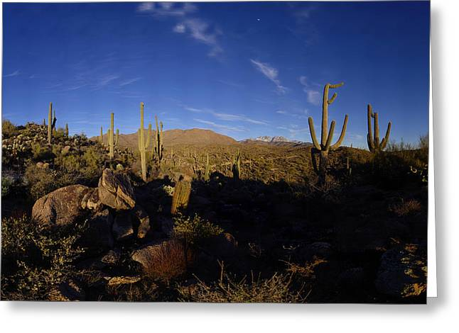Snowy Four Peaks With Saguaro Cactus Greeting Card