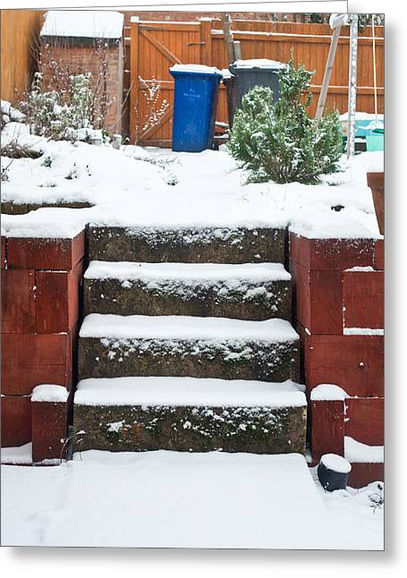 Snowy Garden Greeting Card by Tom Gowanlock