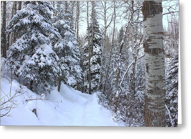 Snowy Hiking Trail Greeting Card