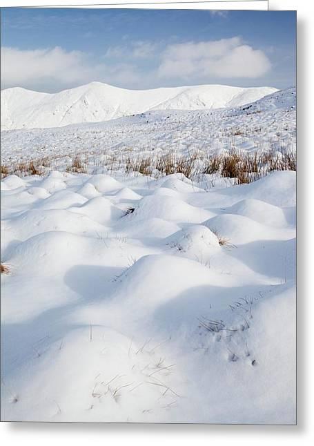 Snowy Hummocks Greeting Card by Ashley Cooper