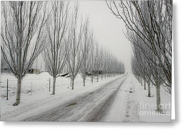Snowy Lane Greeting Card