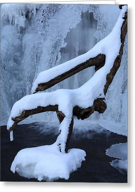 Snowy Log Frozen Canyon Waterfall Greeting Card
