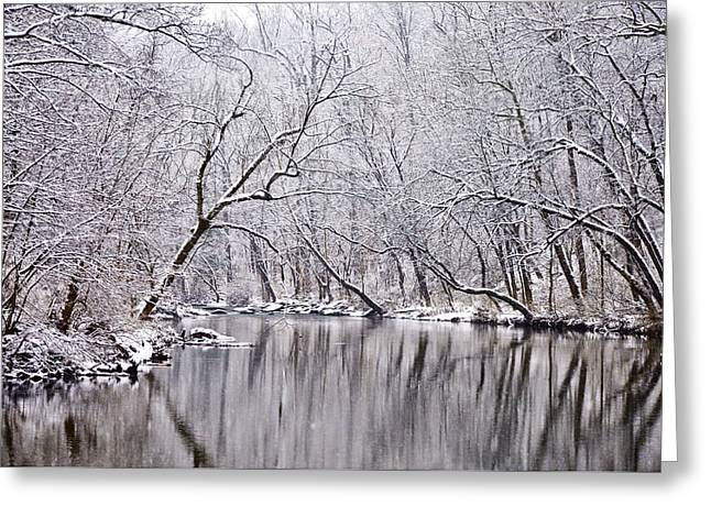 Snowy Morning On Wissahickon Creek Greeting Card by Bill Cannon