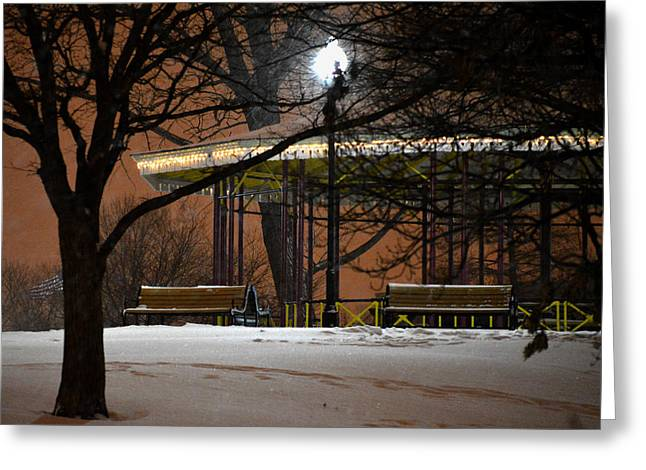 Greeting Card featuring the photograph Snowy Night In Leone Riverside Park by Bill Swartwout