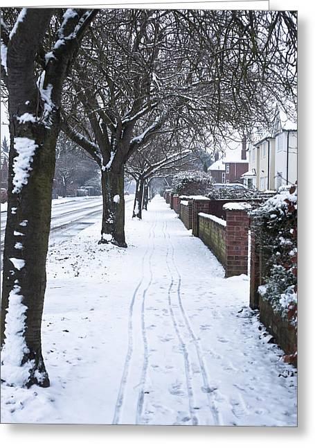 Snowy Path Greeting Card by Tom Gowanlock