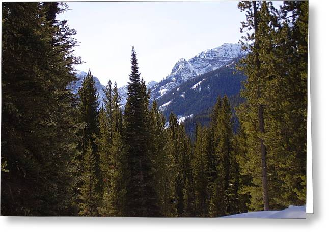 Snowy Peaks Greeting Card by Yvette Pichette