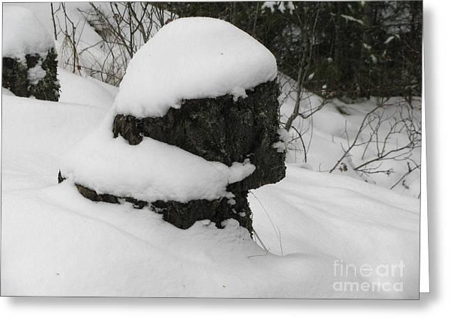 Snowy Profile Greeting Card by Leone Lund