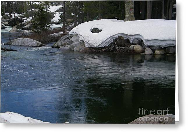 Greeting Card featuring the photograph Snowy River Bend by Bobbee Rickard