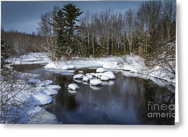 Snowy River Greeting Card by Nancy Dempsey