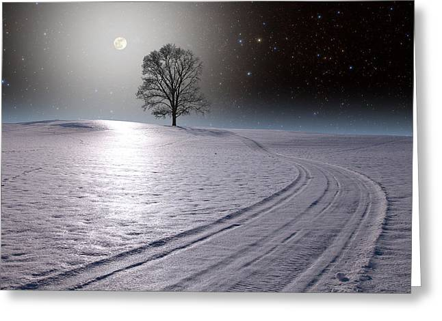 Greeting Card featuring the photograph Snowy Road by Larry Landolfi