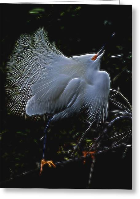 Wild Light 1 Greeting Card by William Horden