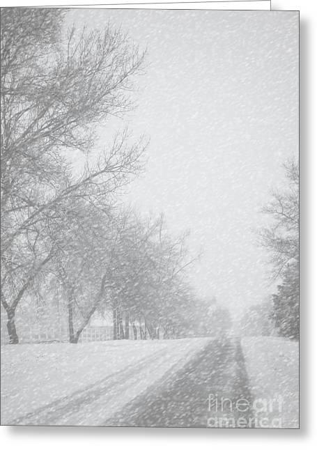 Snowy Rural Road Greeting Card by Birgit Tyrrell