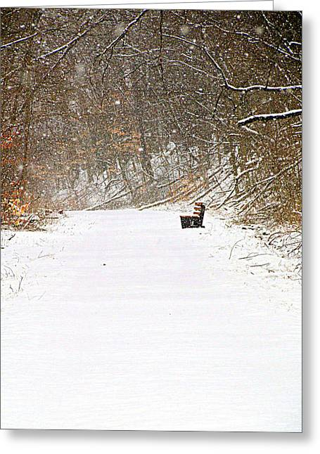 Snowy Seat Greeting Card by Andrea Dale