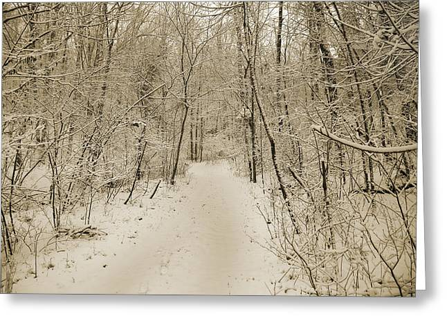 Snowy Sepia Greeting Card by Betsy Knapp