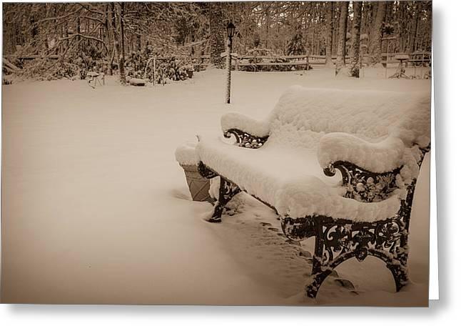 Snowy Sepia Greeting Card by Glenn DiPaola