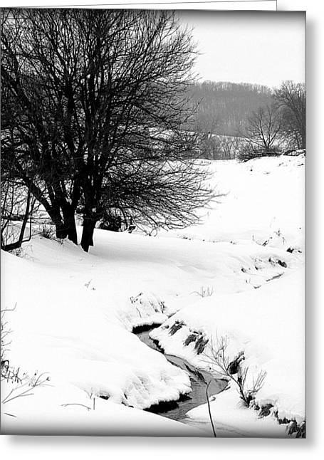 Snowy Stream Greeting Card by Alexandra  Rampolla