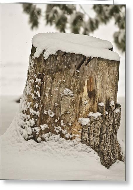 Snowy Stumptown Greeting Card
