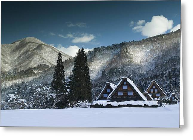 Snowy Trio Greeting Card by Aaron Bedell