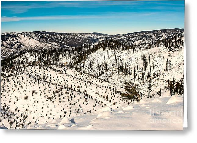 Snowy View Greeting Card by Robert Bales