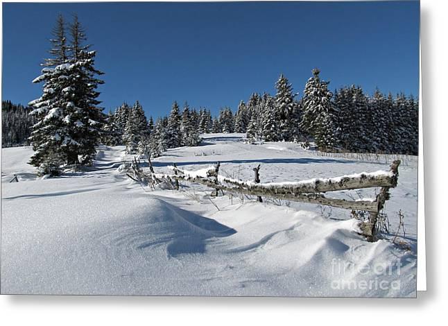 Snowy Winter Scene Greeting Card by Kiril Stanchev