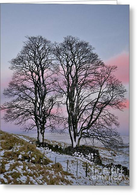 Snowy Winter Treescape Greeting Card