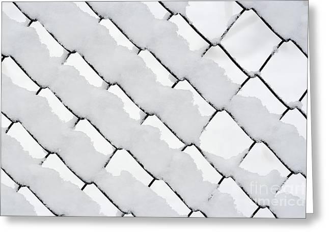 Snowy Wire Netting Greeting Card by Michal Boubin