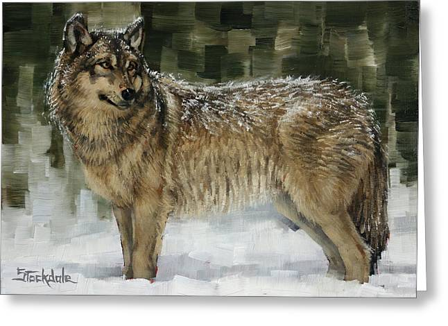 Snowy Wolf Greeting Card by Margaret Stockdale
