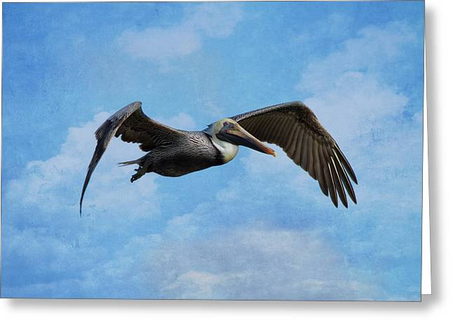 Soaring By Greeting Card