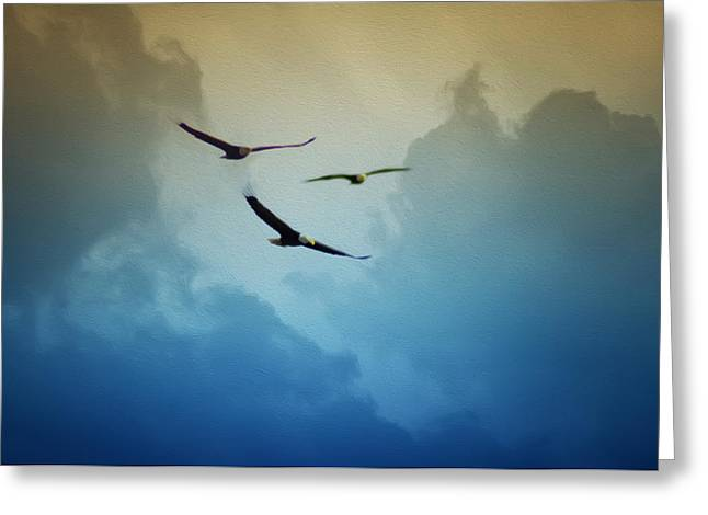 Soaring Eagles Greeting Card by Bill Cannon