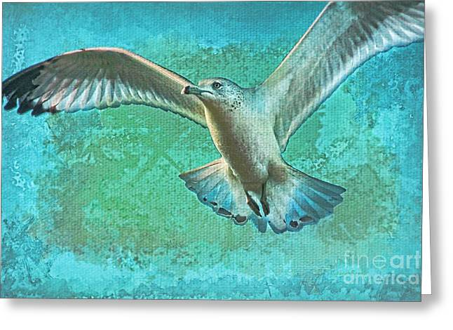 Soaring On Lifes Air Drafts Greeting Card by Deborah Benoit